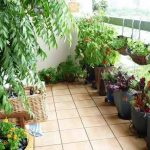 huerto urbano terraza macetas frutales y fresas