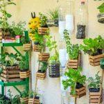Huerto vertical con elementos reciclados