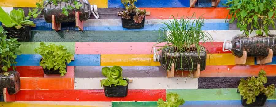 Ideas de Huertos urbanos verticales. Guía para crear un huerto vertical