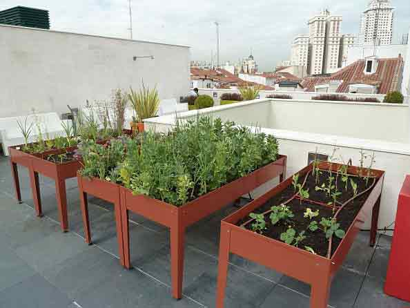mesa cultivo huerto terraza