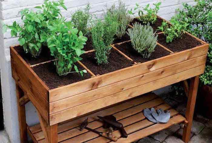 Las mejores Mesas de cultivo para huertos urbanos