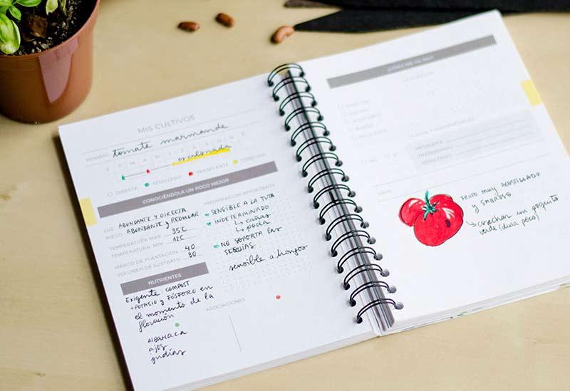 Planning calendario cultivos huerto
