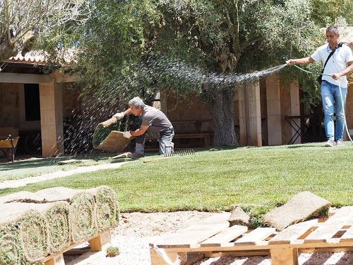 Como instalar tepes de cesped natural