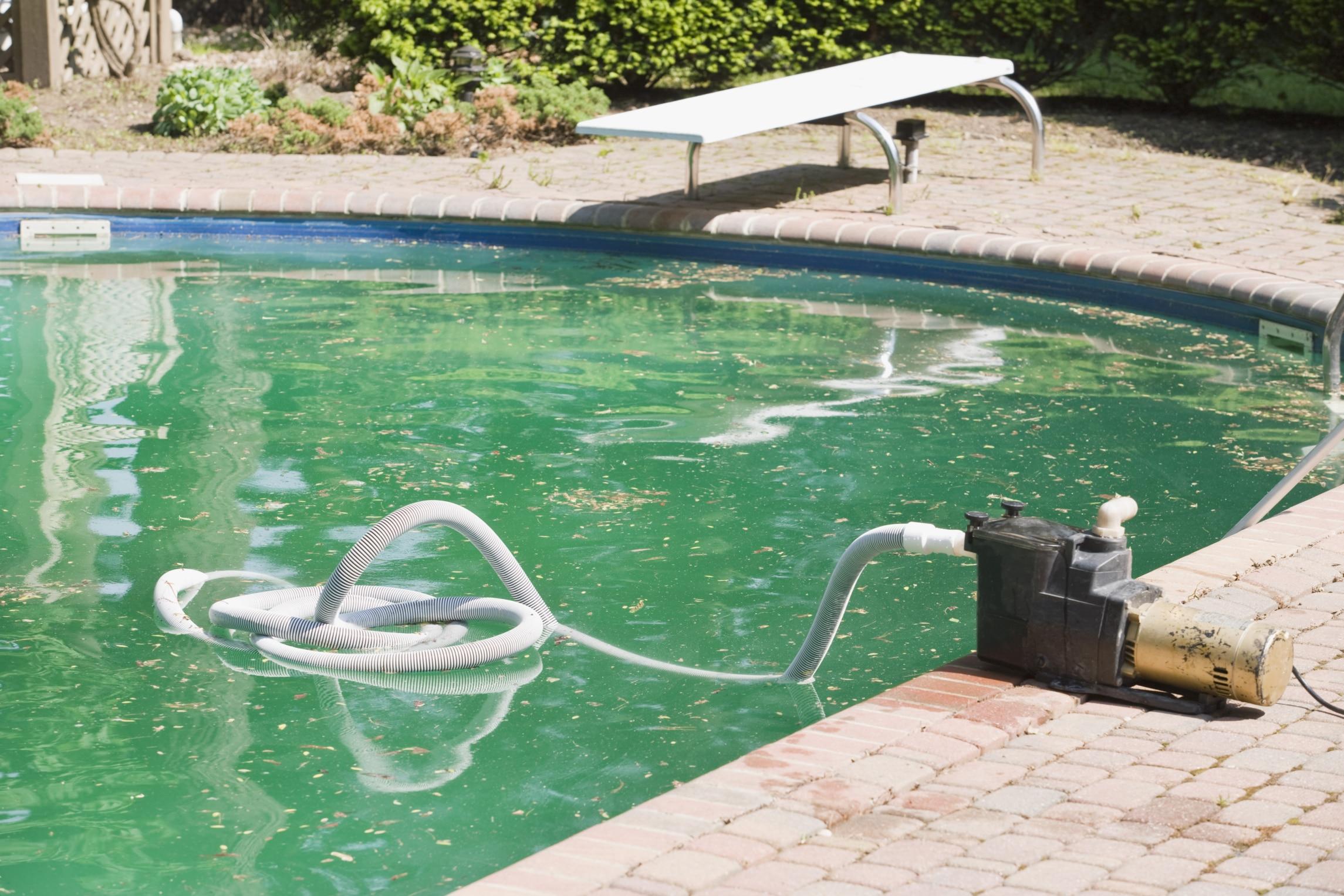 Como eliminar las algas de la piscina
