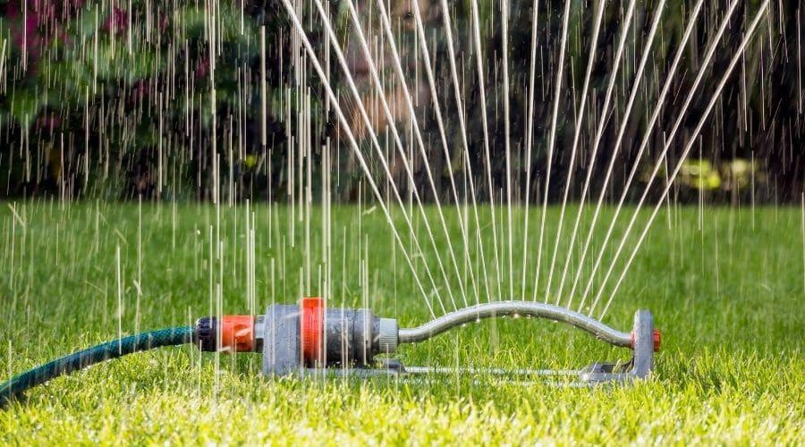 Cómo ahorrar agua en el jardín en verano